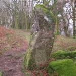 Houndtor Woods 011